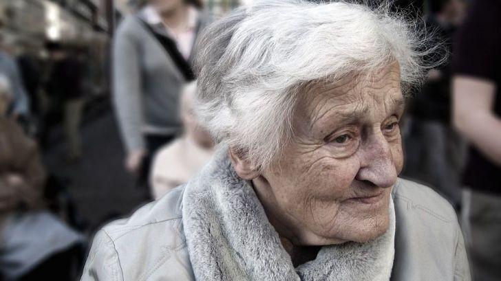 Expertos debaten sobre el futuro de las residencias y los cuidados de los mayores