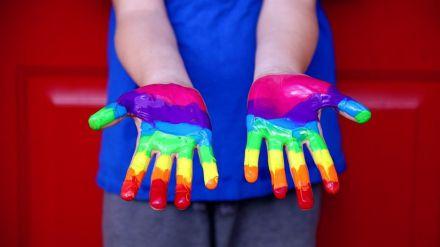 La adopción homoparental a examen