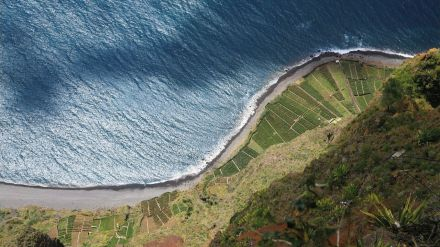 Madeira y su invitación a los nómadas digitales