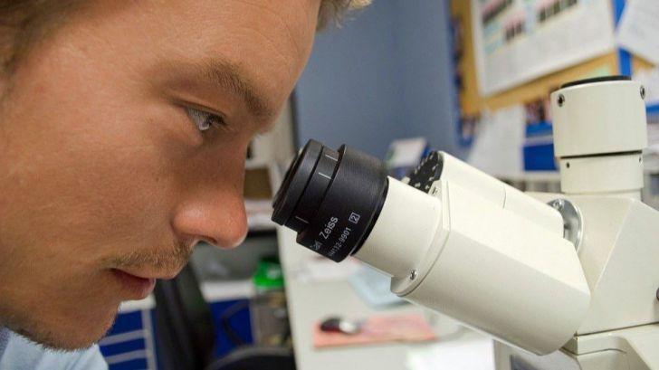 Una forma 'ultrarrápida y barata' para detectar el SARS-CoV-2