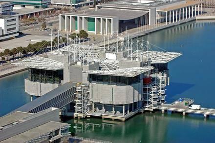 El Oceanario de Lisboa, el mejor acuario del mundo